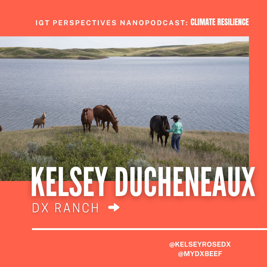 Kelsey on Climate